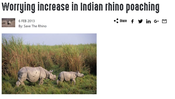 Rhino-Poaching-in-India